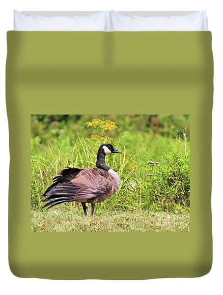 Duvet Cover featuring the photograph Canada Goose by Debbie Stahre