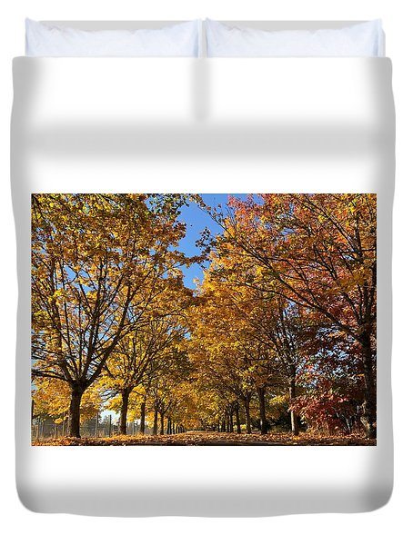 Canopy Of Color Duvet Cover