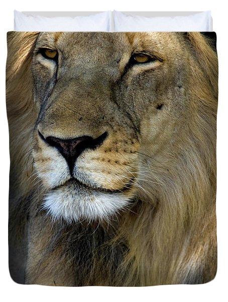 Cape Lion Duvet Cover