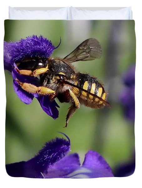 Carder Bee On Salvia Duvet Cover