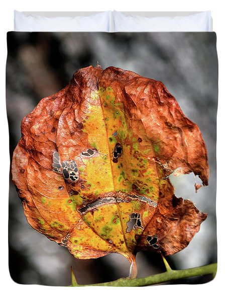 Duvet Cover featuring the photograph Carved Pumpkin Leaf At Gordon's Pond by Bill Swartwout Fine Art Photography
