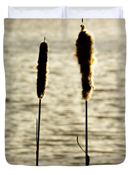 Cattails In The Sun Duvet Cover