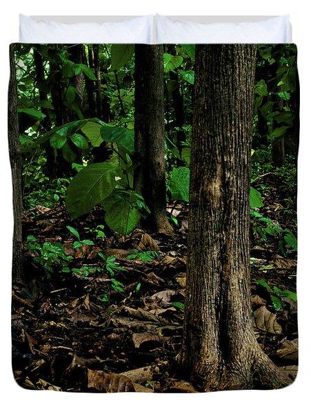 Cedar Trees Duvet Cover