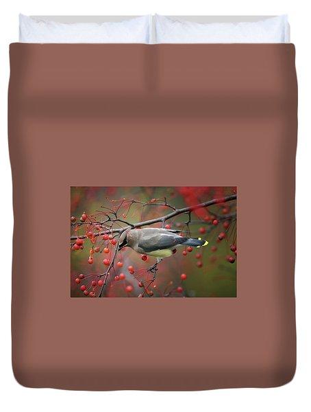 Cedar Waxwing 102206 Duvet Cover