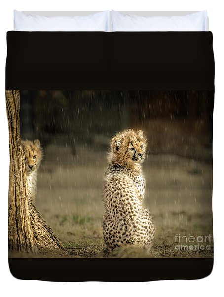 Cheetah Cubs And Rain 0168 Duvet Cover