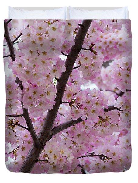 Cherry Blossoms 8611 Duvet Cover