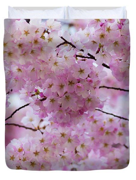 Cherry Blossoms 8625 Duvet Cover