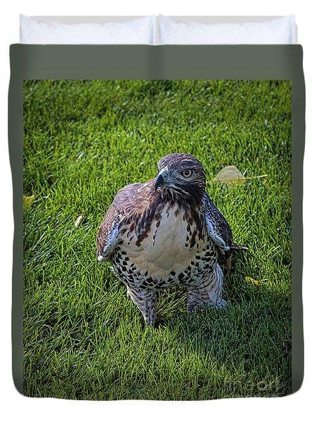 Chicken Hawk Duvet Cover