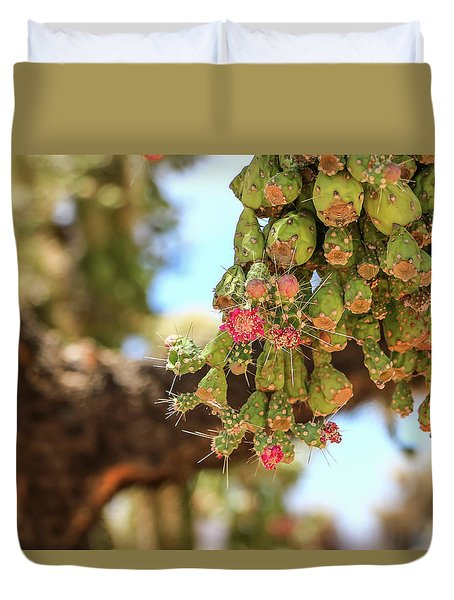Duvet Cover featuring the photograph Cholla Cactus Blooms by Dawn Richards