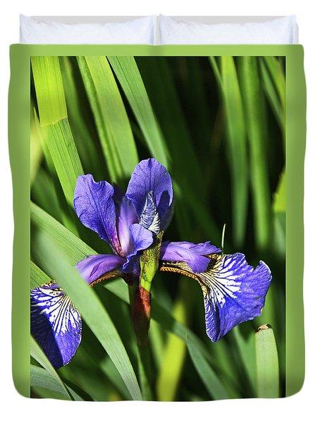 Chorley. Picnic In The Park. Walled Garden Iris. Duvet Cover
