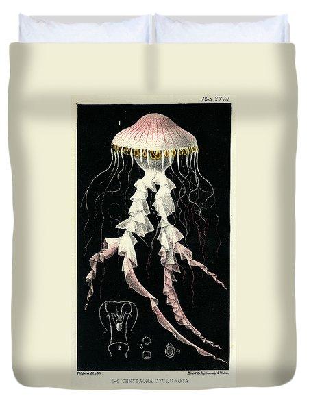Chrysaora Cyclonota Duvet Cover