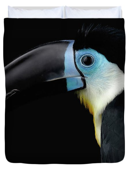 Close-up Channel-billed Toucan, Ramphastos Vitellinus, Isolated On Black Duvet Cover