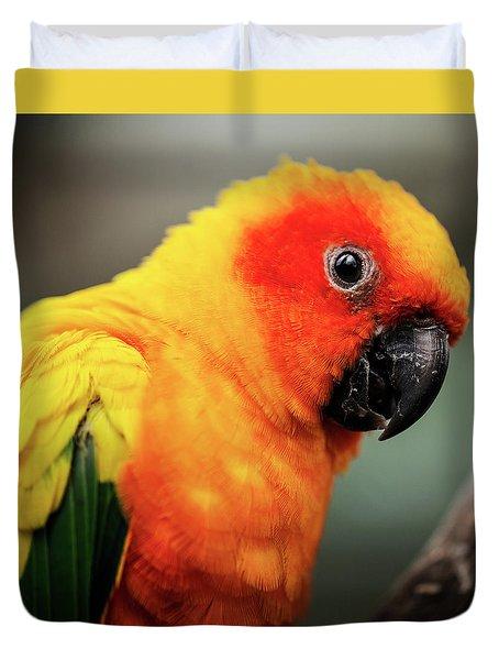 Close Up Of A Sun Conure Parrot. Duvet Cover