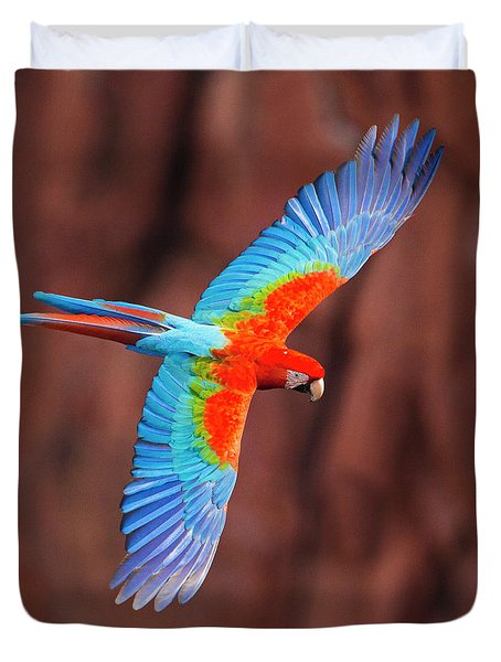 Close Up Of Flying Red-and-green Macaw Duvet Cover