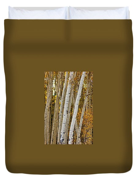 Colorado Aspens Duvet Cover