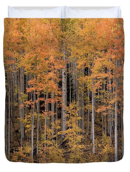 Colorado Guardians Duvet Cover