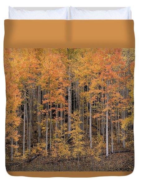 Colorado Guardians Duvet Cover