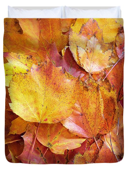 Colors Of Fall - Yellow To Red Duvet Cover
