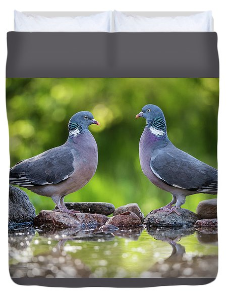 Common Wood Pigeons Meeting At The Waterhole Duvet Cover