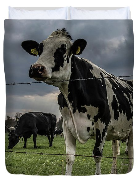 Duvet Cover featuring the photograph Cows Landscape. by Anjo Ten Kate