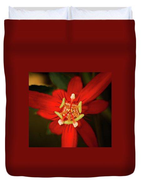 Crimson Beauty Duvet Cover