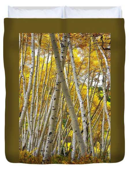 Crossed Aspens Duvet Cover