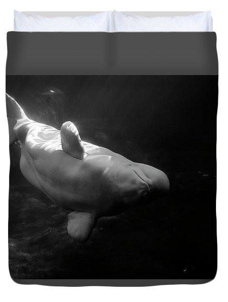 Curious Beluga Duvet Cover