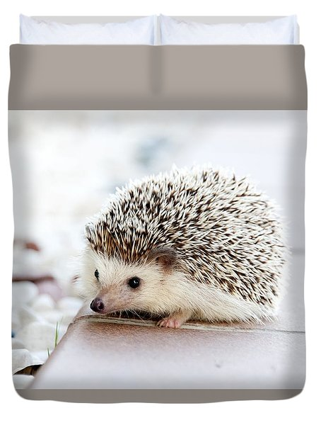 Cute Hedgeog Duvet Cover