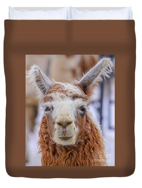 Cute Llama Duvet Cover