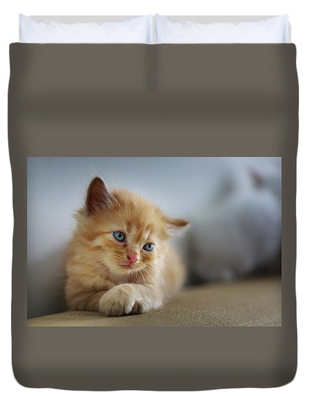Cute Orange Kitty Duvet Cover