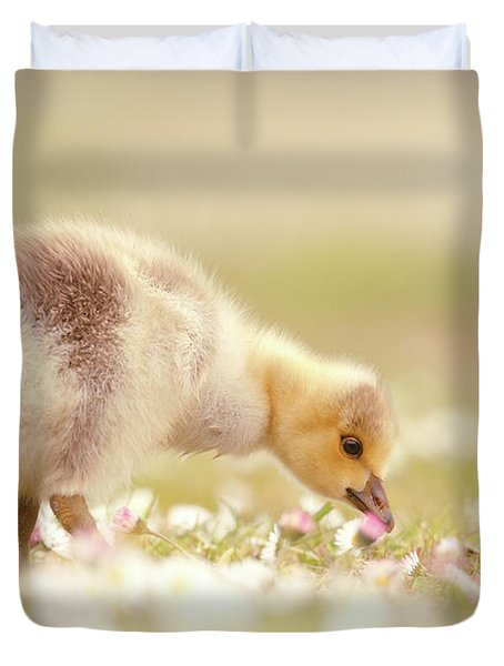 Cute Overload Series - Grazing Gosling Duvet Cover