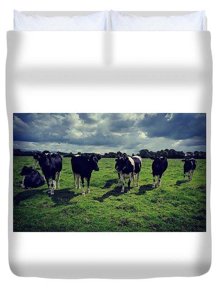 Dairy Heifers Duvet Cover