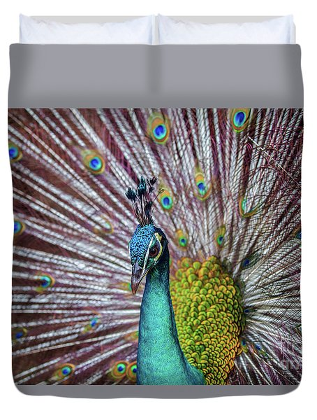 Dancing Indian Peacock  Duvet Cover