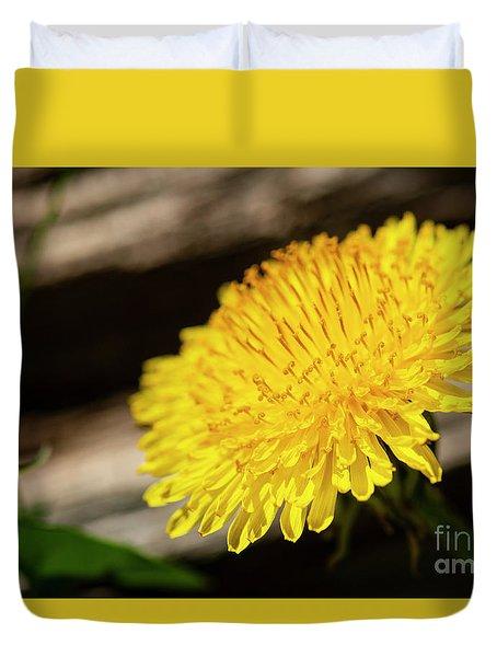 Dandelion In Bloom Duvet Cover
