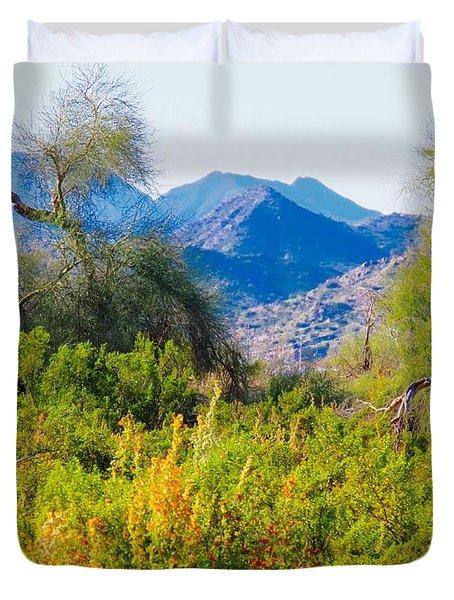 Deep Desert Valley In A Sonoran Desert Spring Duvet Cover
