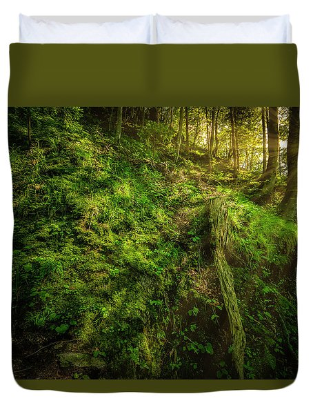 Deep In The Forests Of Bavaria Duvet Cover