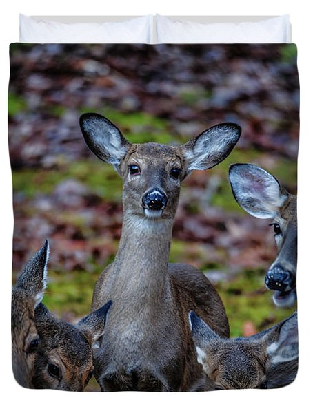 Deer Gathering Duvet Cover