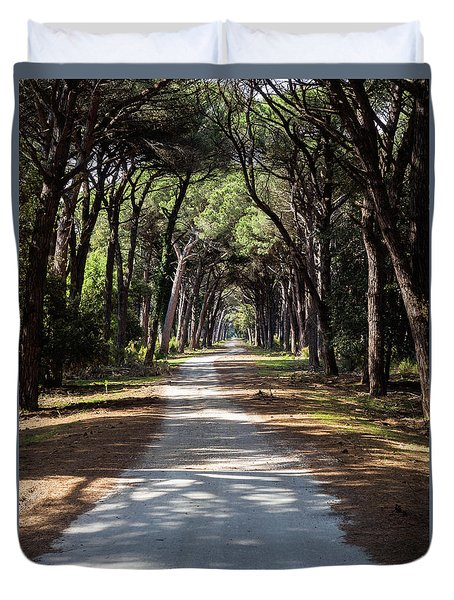Dirt Pathway In A Mediterranean Pine Forest Duvet Cover