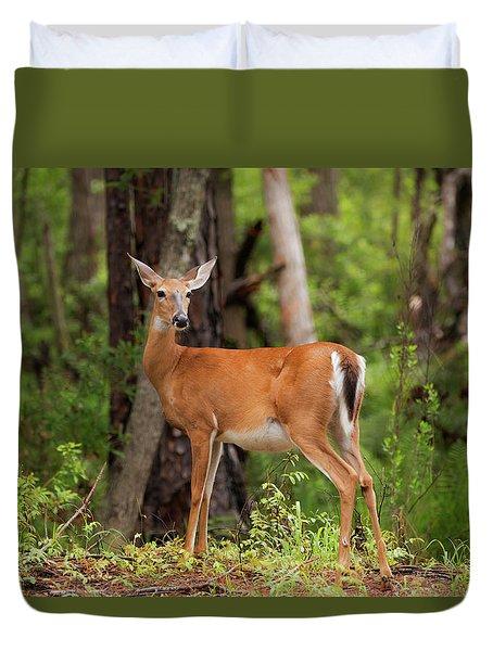 Doe, A Deer, A Female Deer Duvet Cover
