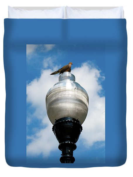 Duvet Cover featuring the photograph Dove On A Light Post by Lora J Wilson