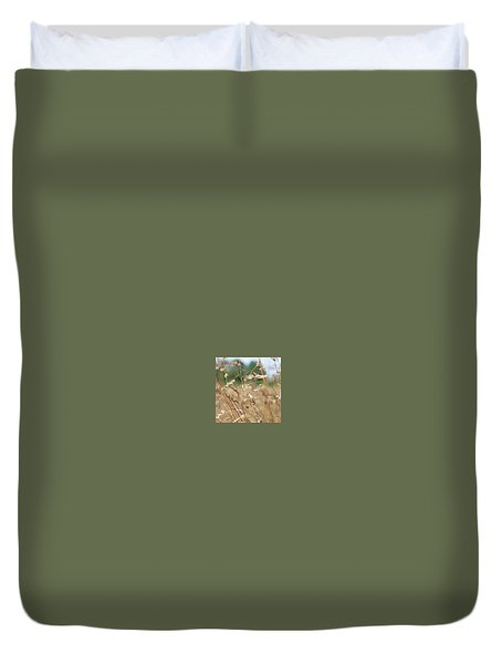 Duvet Cover featuring the photograph Dried Grass Out Of Focus by Scott Lyons