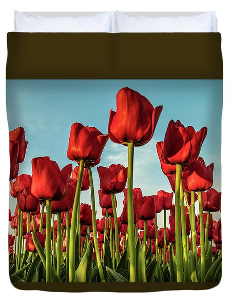 Duvet Cover featuring the photograph Dutch Red Tulip Field. by Anjo Ten Kate