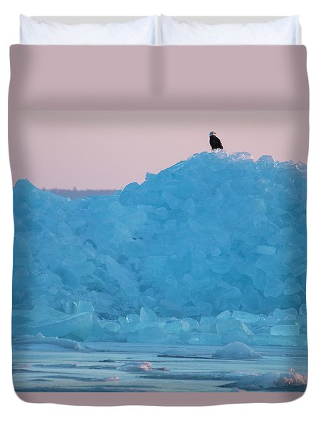 Eagle On Ice Mackinaw City 2261803 Duvet Cover