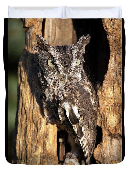 Eastern Screech Owl 92515 Duvet Cover