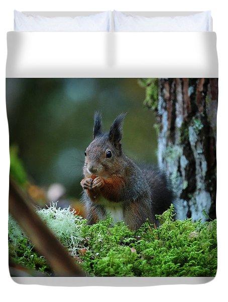 Eating Squirrel Duvet Cover