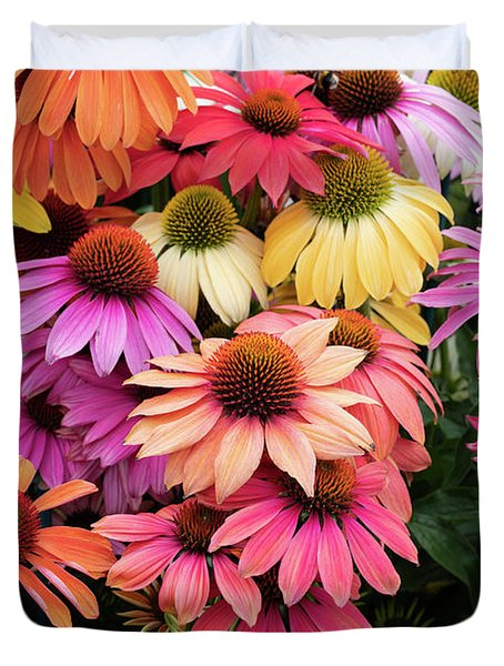 Echinacea Cheyenne Spirit Colour Duvet Cover