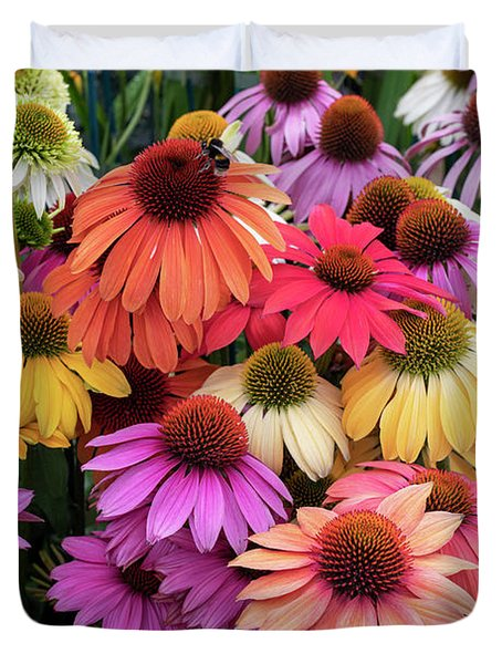 Echinacea Color Duvet Cover