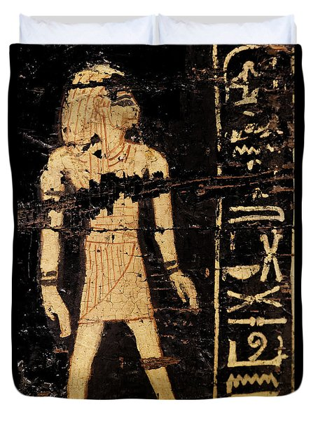 Duvet Cover featuring the photograph Egyptian Immortal Art by Sue Harper