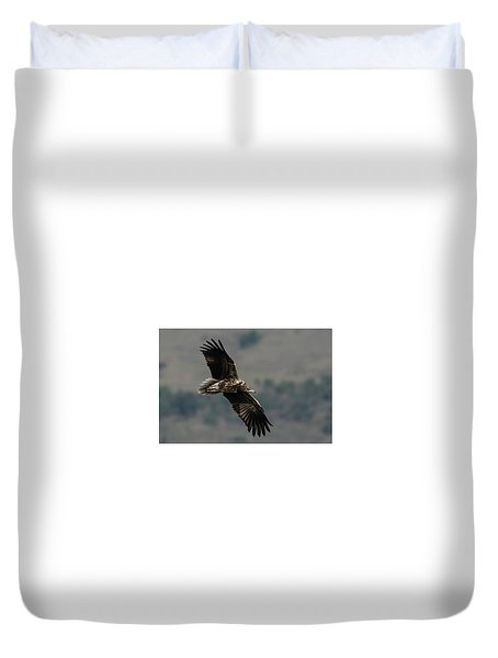 Egyptian Vulture, Sub-adult Duvet Cover