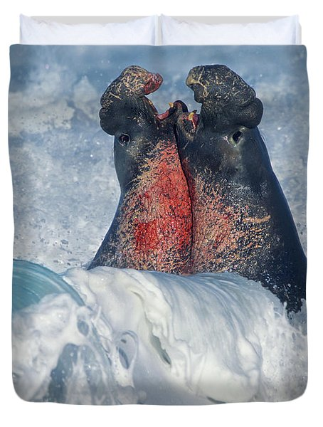 Elephant Seal Bulls Fighting In Surf Duvet Cover
